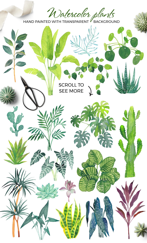 Scandi house plants interior creator example image 7