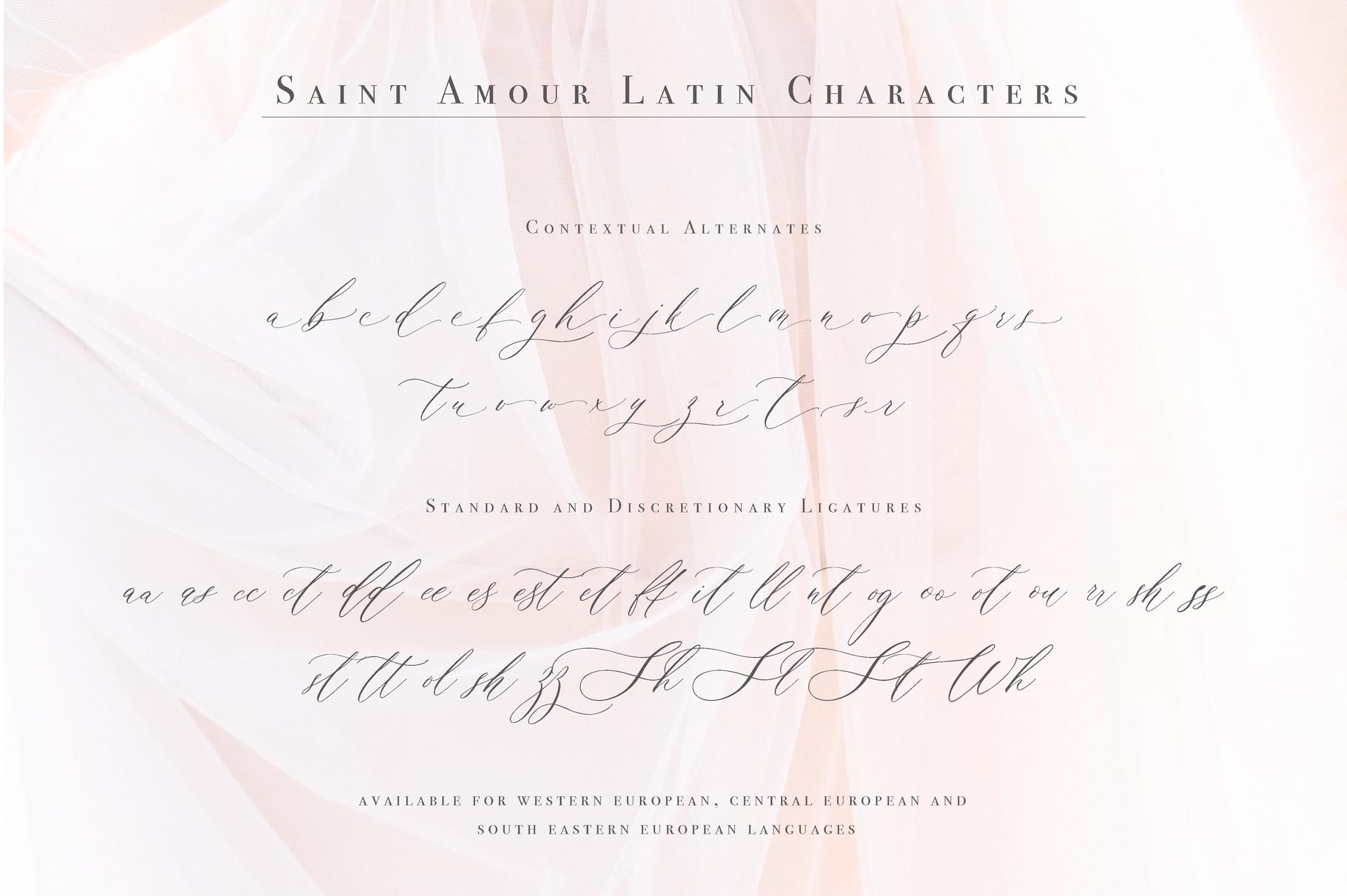 Saint Amour Script example image 8