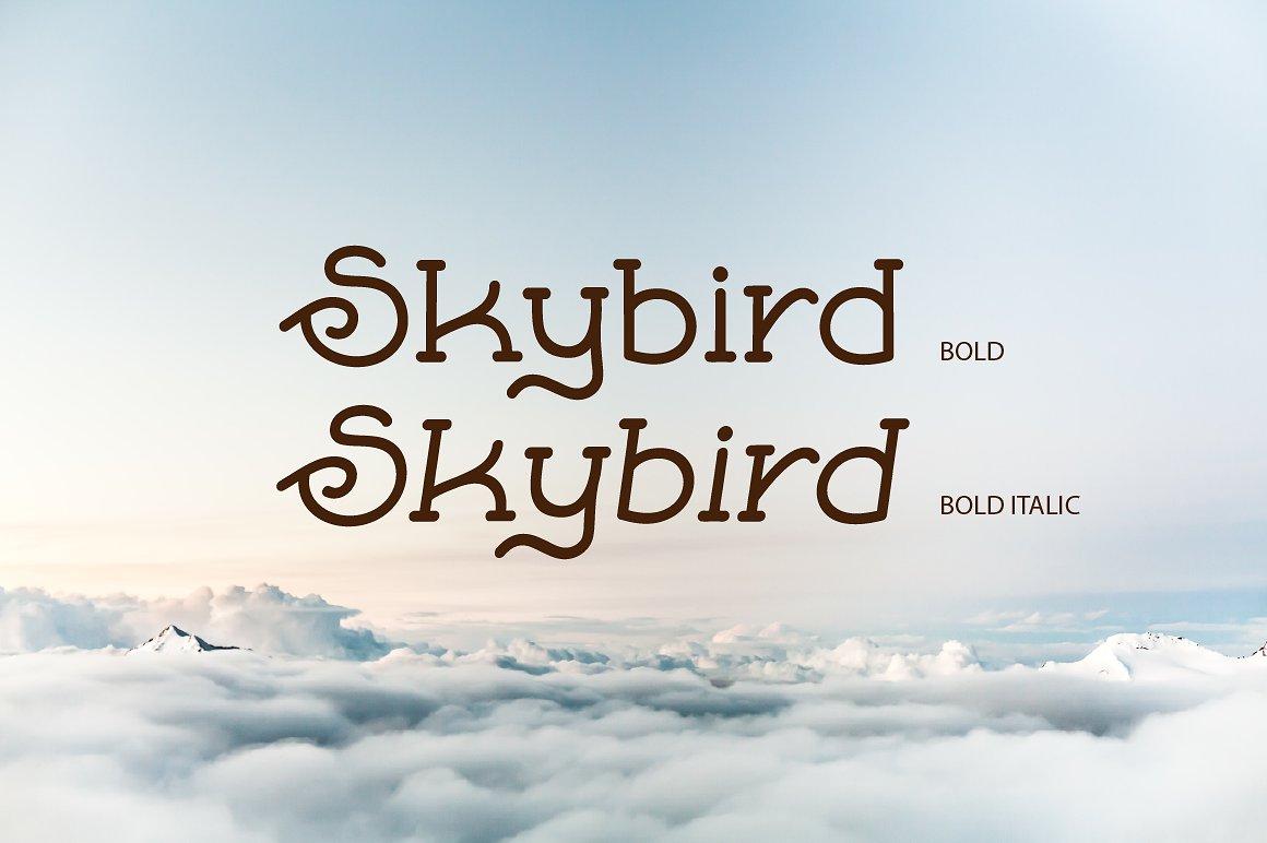 Skybird Family - Crazy, unique & retro example image 5