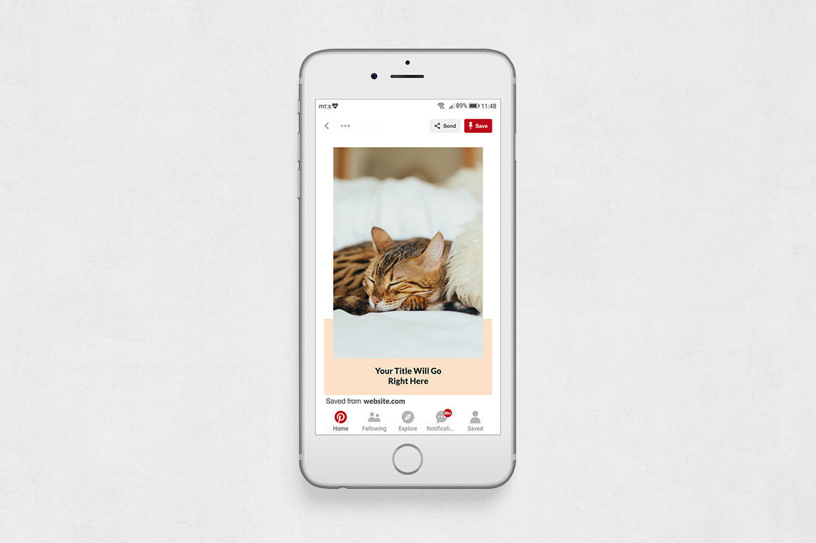 Cats Pinterest Posts example image 6