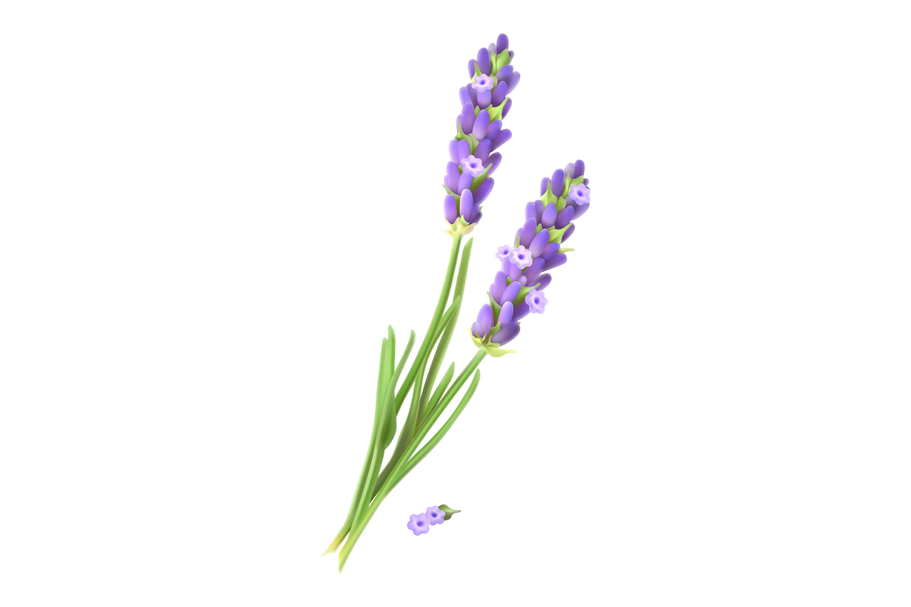 Skincare cosmetics. Lavender, chamomile, mint, almond, olive example image 4