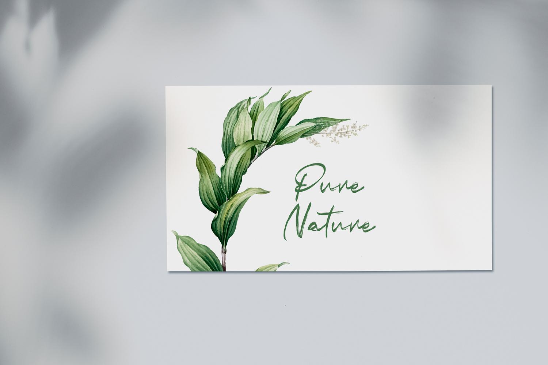 Indobrush Signature Brush example image 6