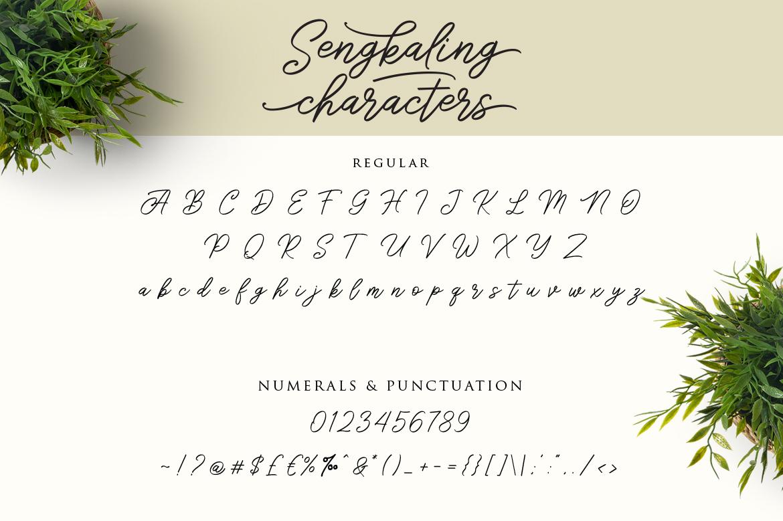 Sengkaling Script example image 7