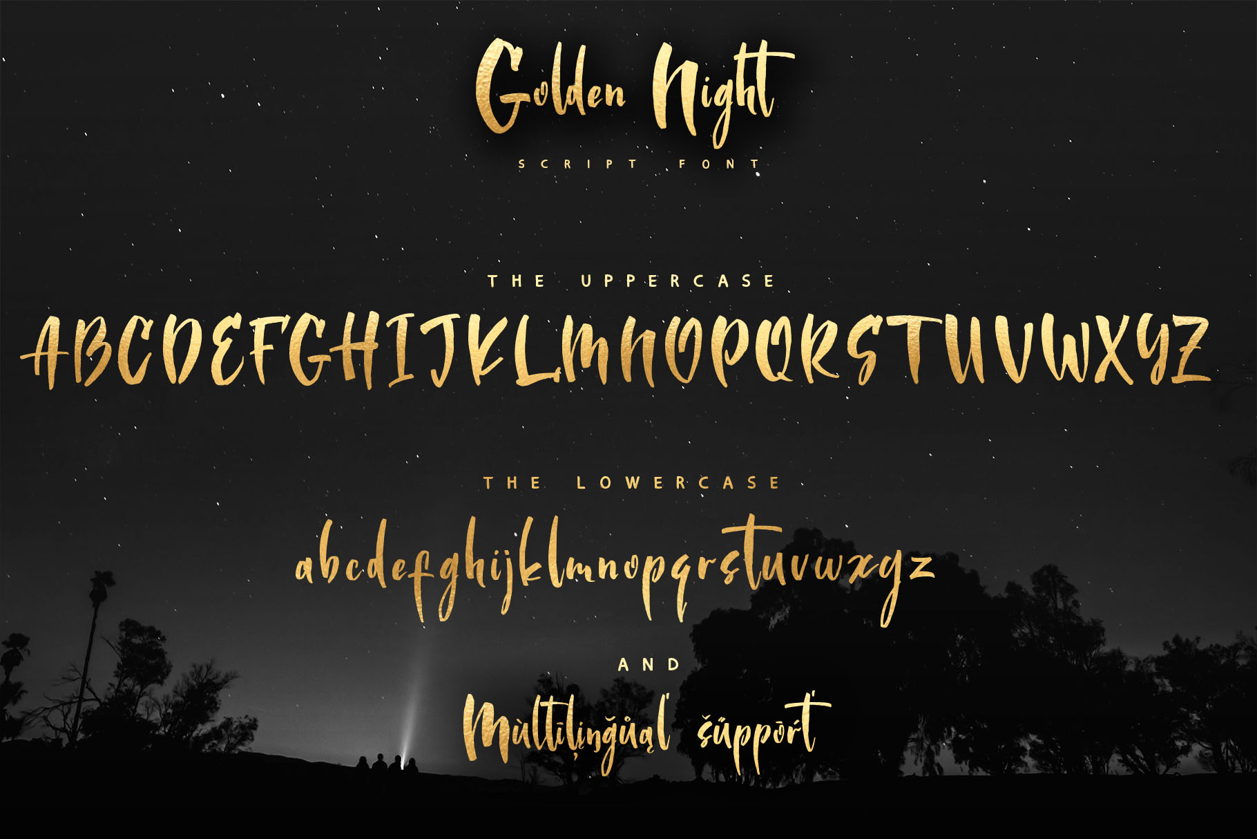 Golden Night script font example image 2