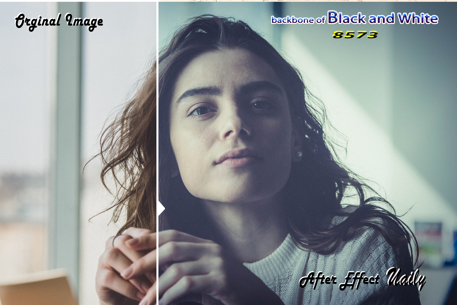 Backbone of Black and White Lightroom Presets example image 7