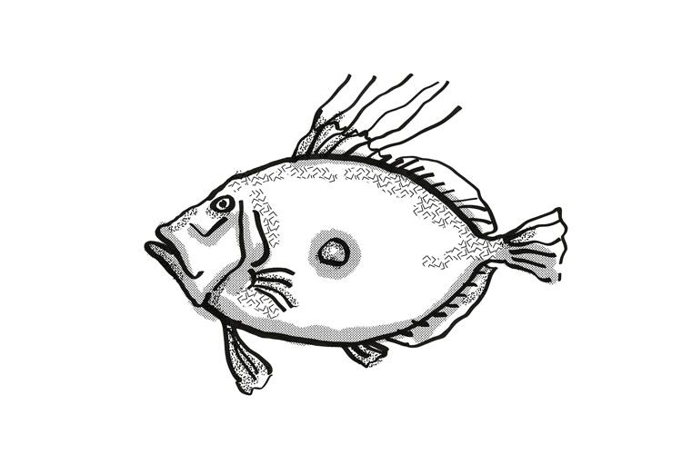 King Dory New Zealand Fish Cartoon Retro Drawing example image 1