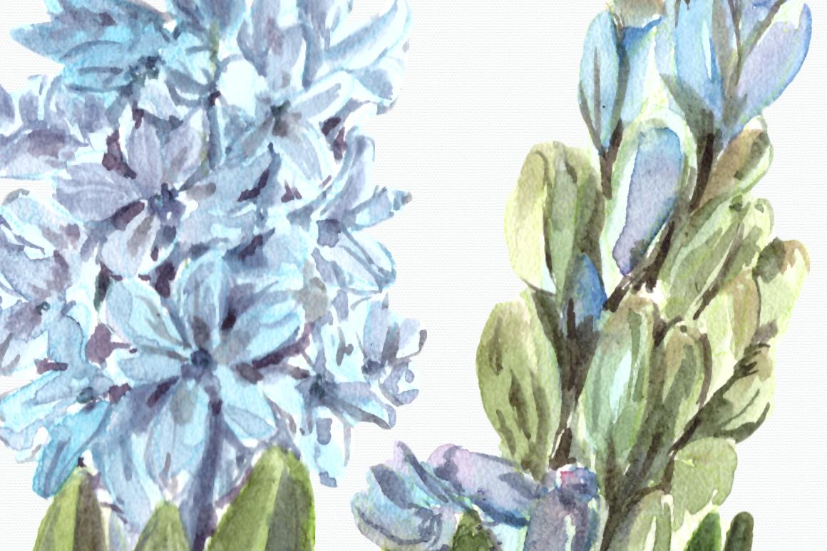 Watercolor Hyacinth Clip Art Set example image 2