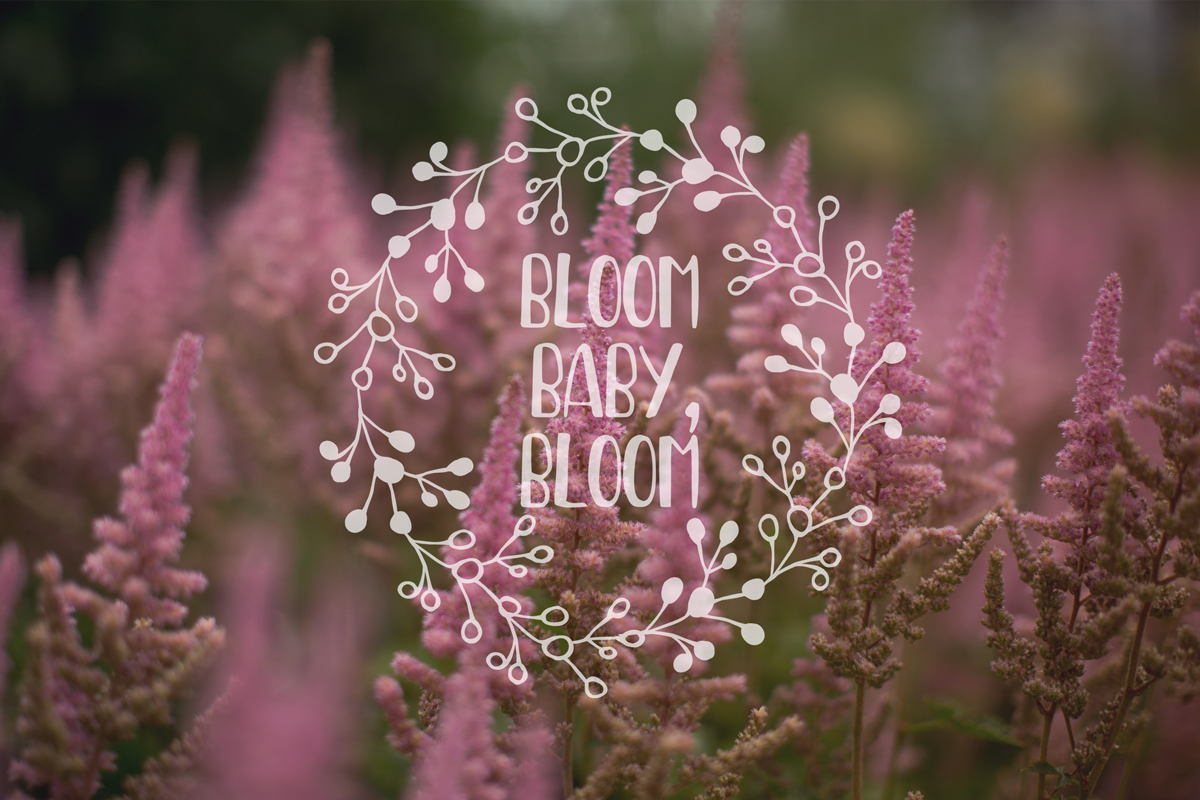 MultiFloral summer font example image 5