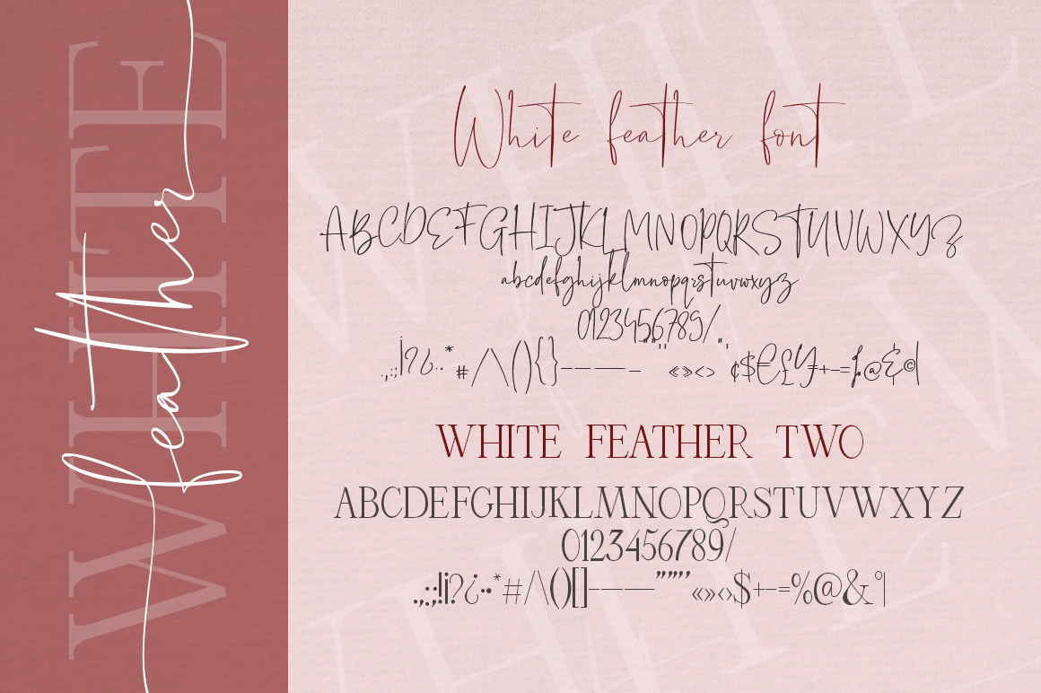 White Feather. Luxury Duo Font. example image 13