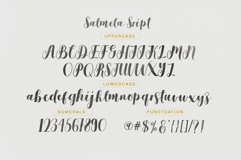 Salmela Script  example image 5