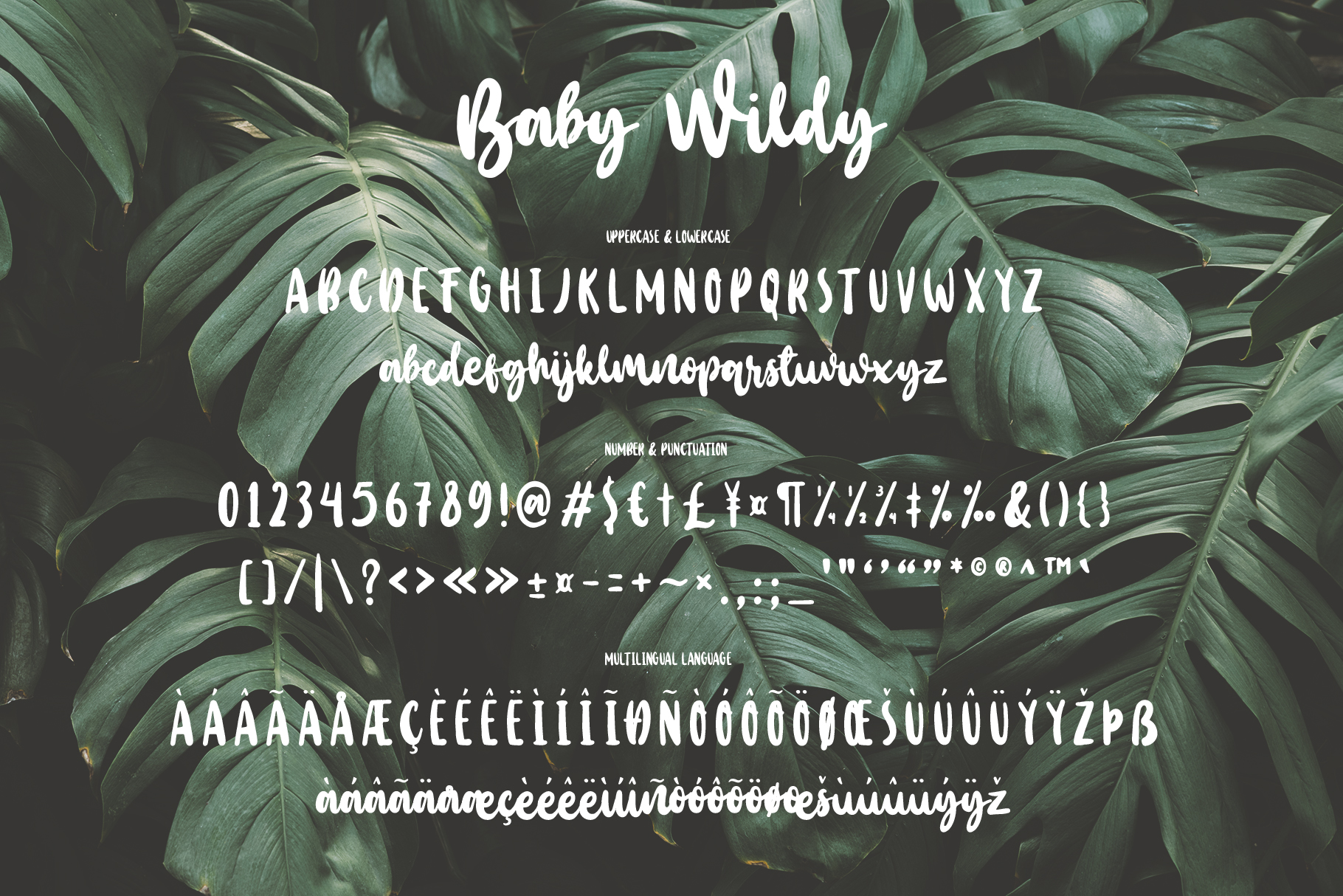 Baby Wildy example image 5