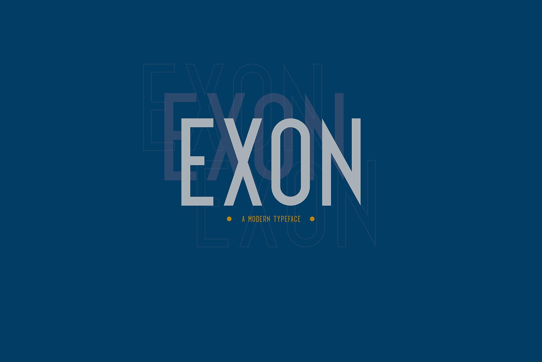 EXON example image 1