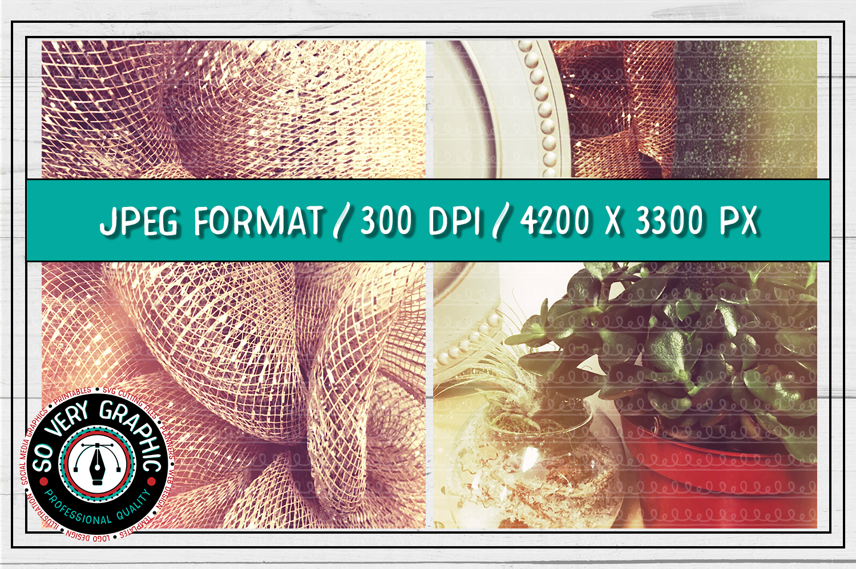 20 Vintage Succulents Holiday Styled Stock   Mock Up Bundle example image 9