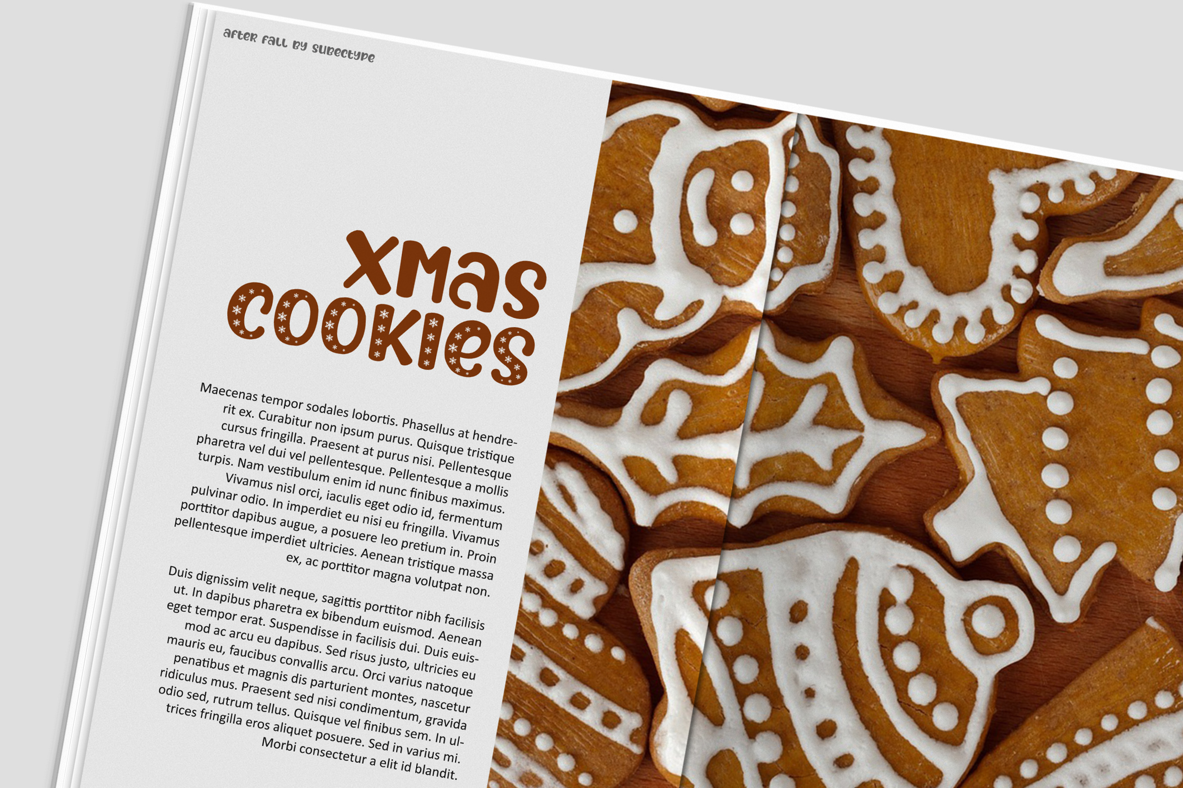 After Fall Winter and Xmas Font example image 8