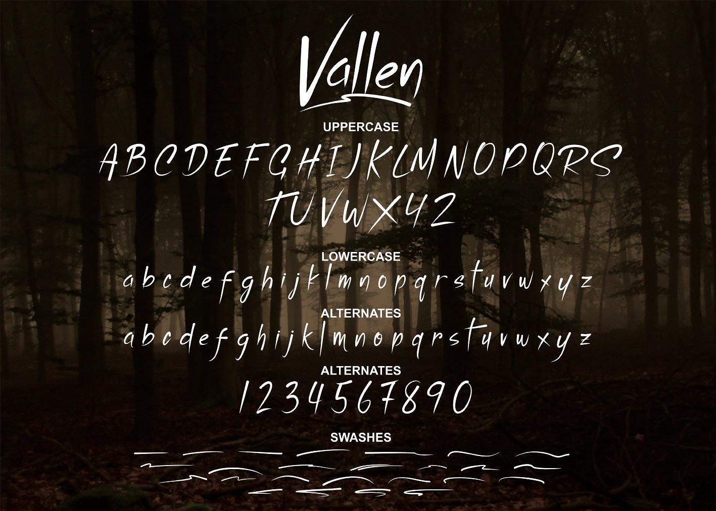 Vallen example image 6