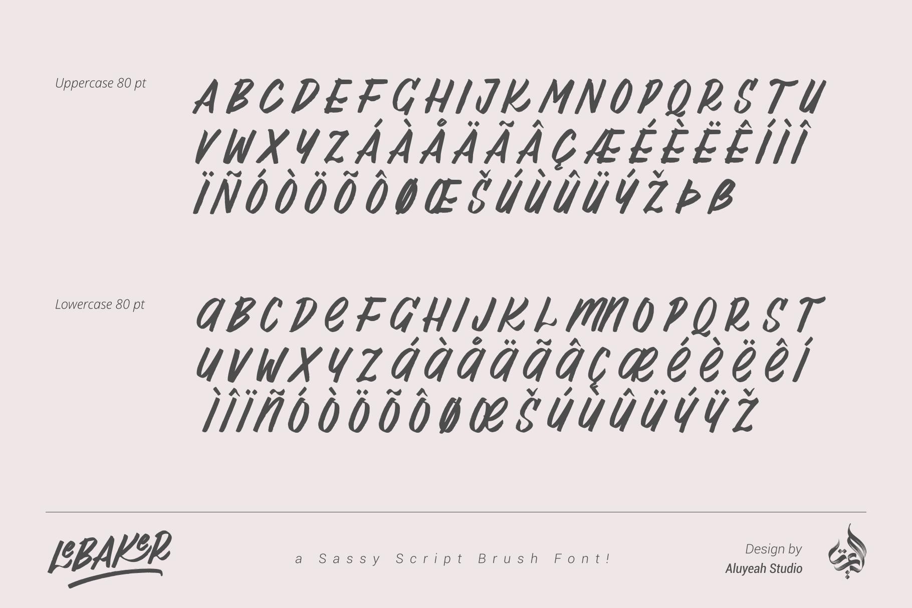 AL Lebaker - Homemade Script Font example image 7