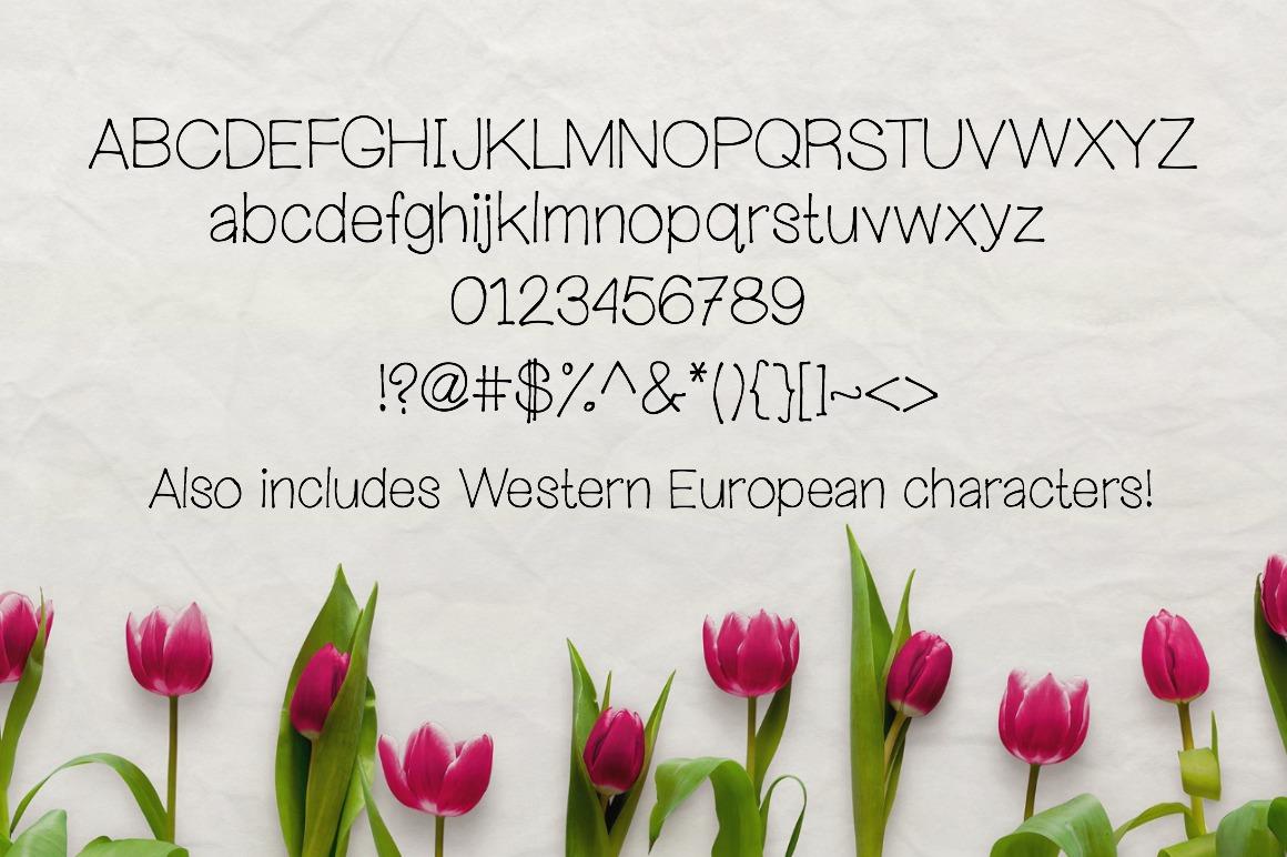 Wandering Heart- Handwritten Font example image 2