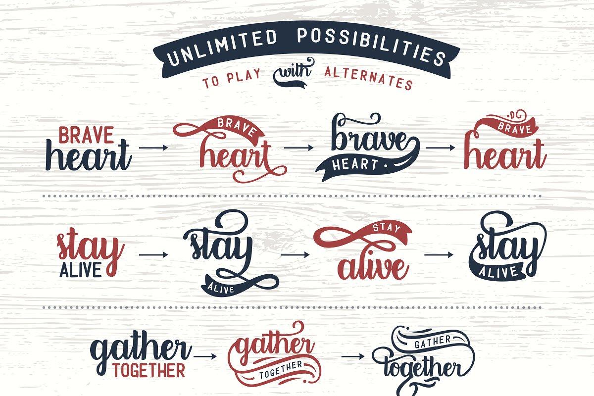 Designers font Bundle 11 Fonts example image 21