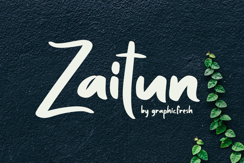 Zaitun | A Nature Branding Font example image 6