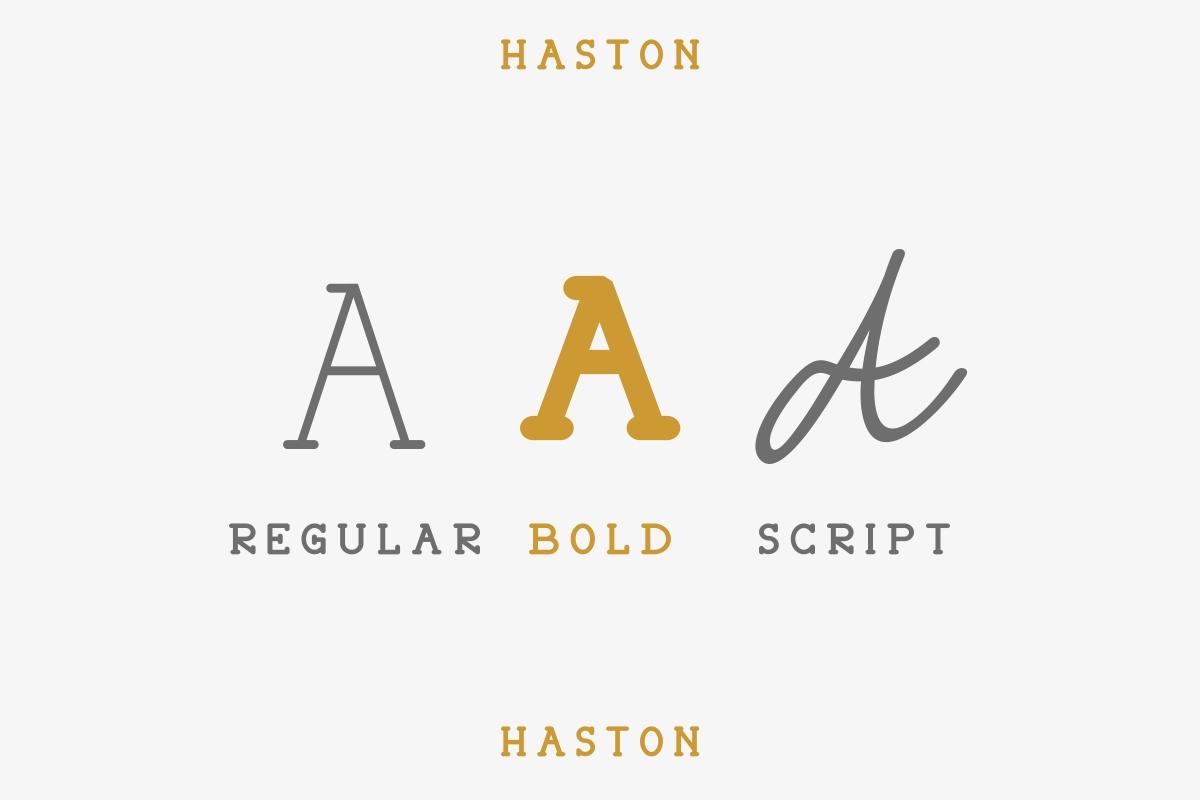 HASTON example image 4
