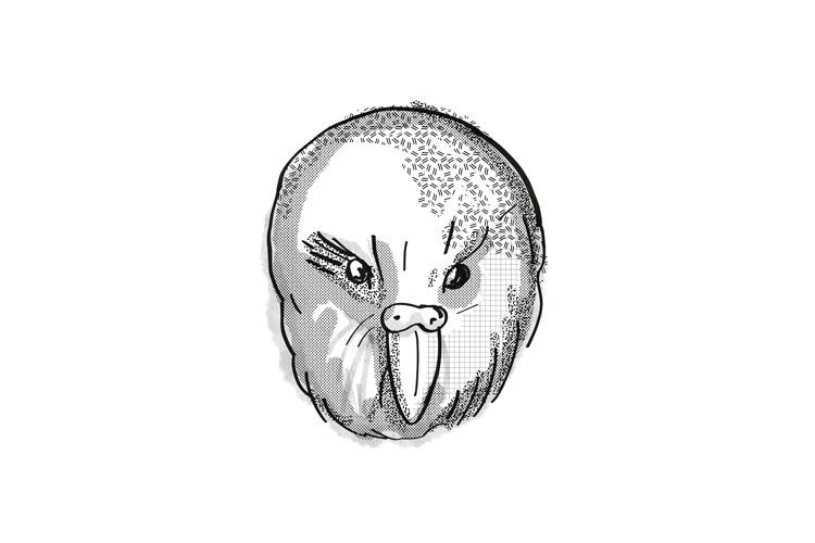 kakapo New Zealand Bird Cartoon Retro Drawing example image 1