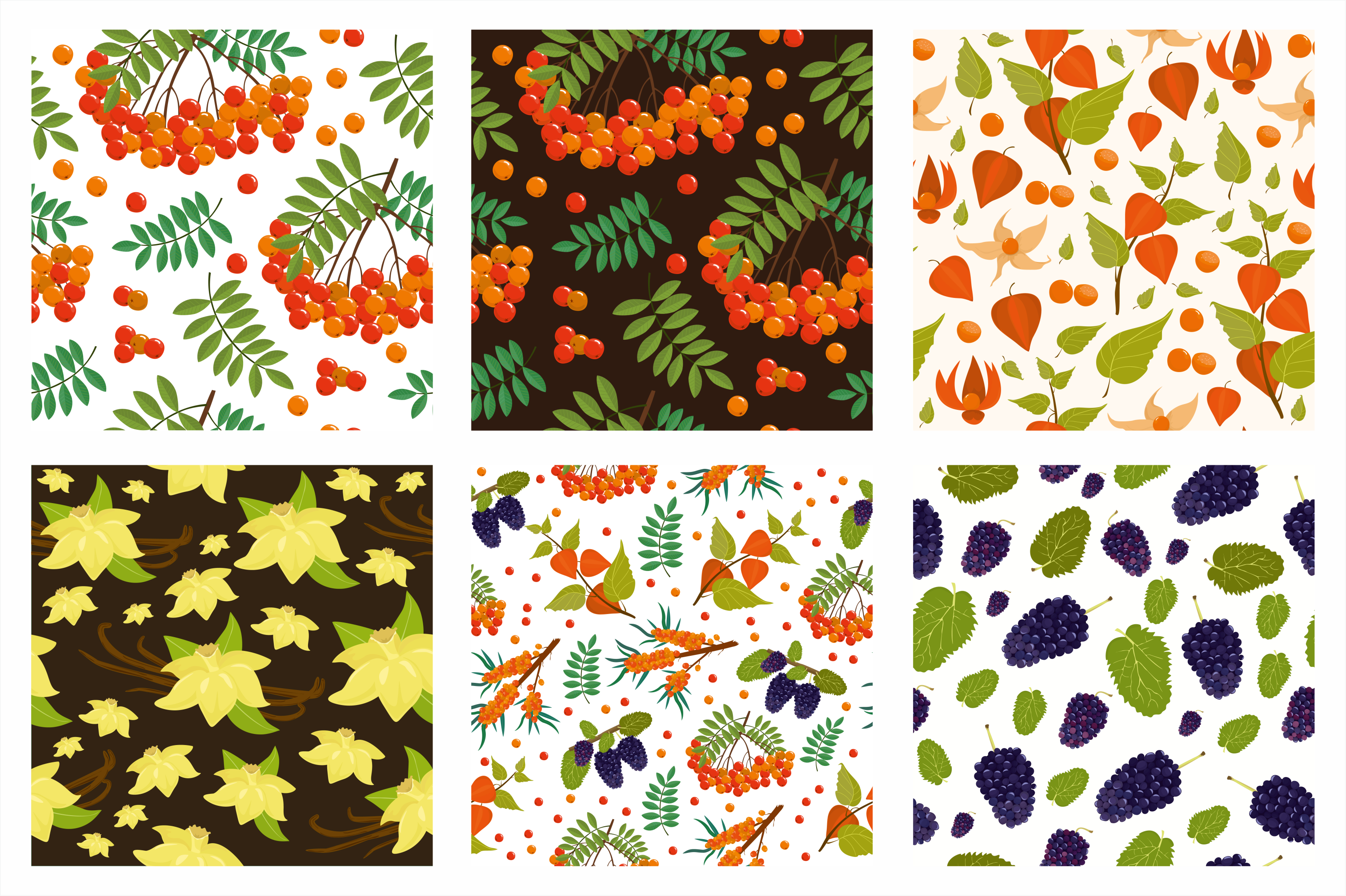 Superfoods. Berries. Patterns. example image 2