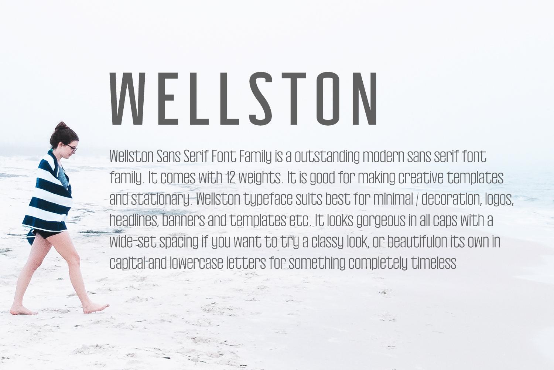 Wellston Modern Sans Serif Font Family example image 4