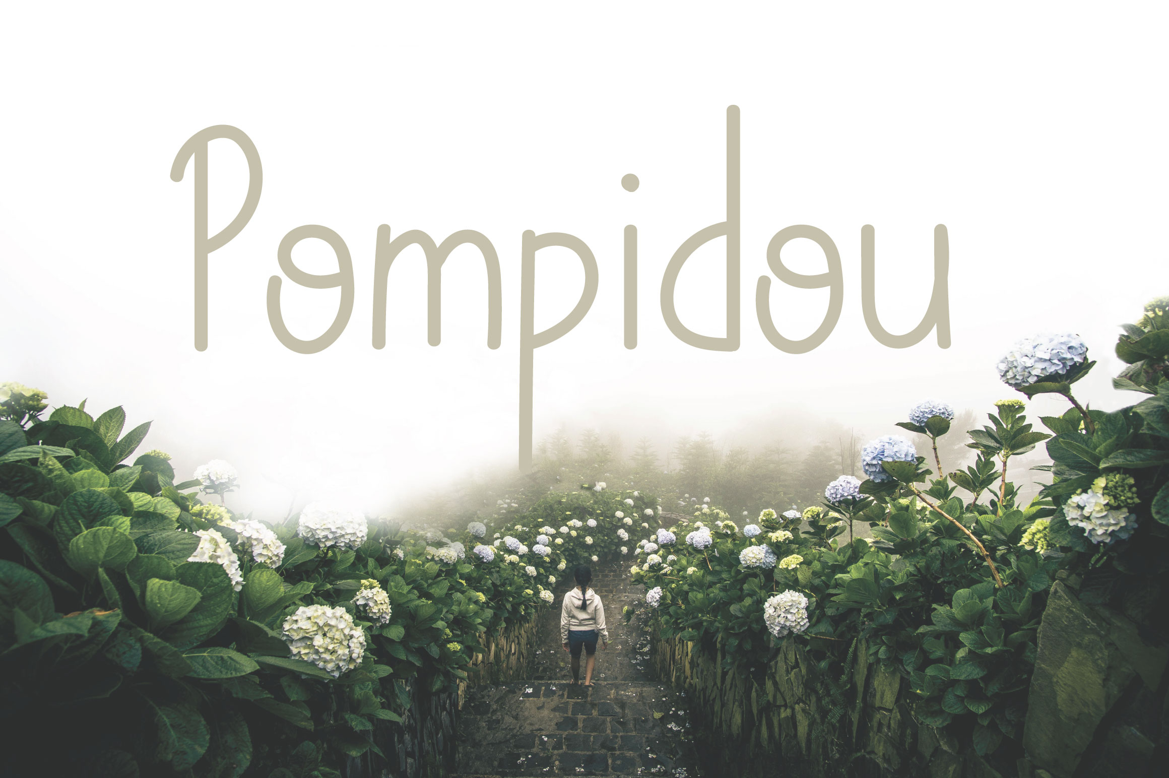 Pompidou | Sans Serif with Extras example image 1