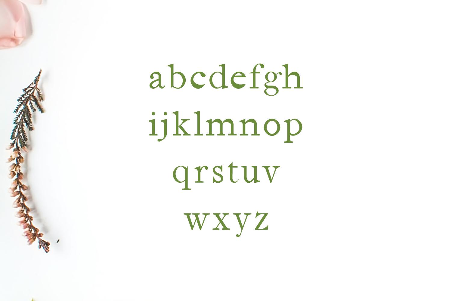 Jerricca Serif Typeface example image 3