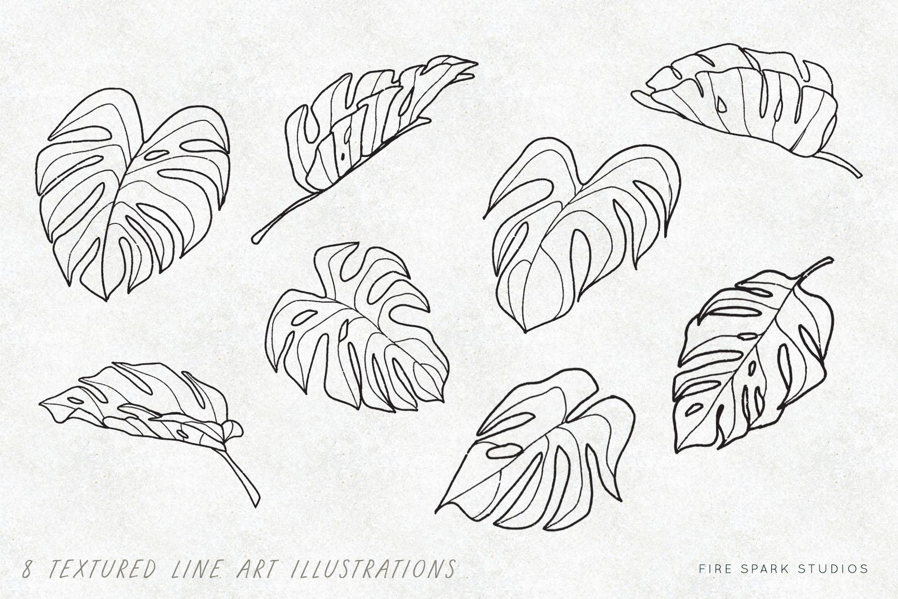 Monstera Vector Illustrations & Patterns example image 2