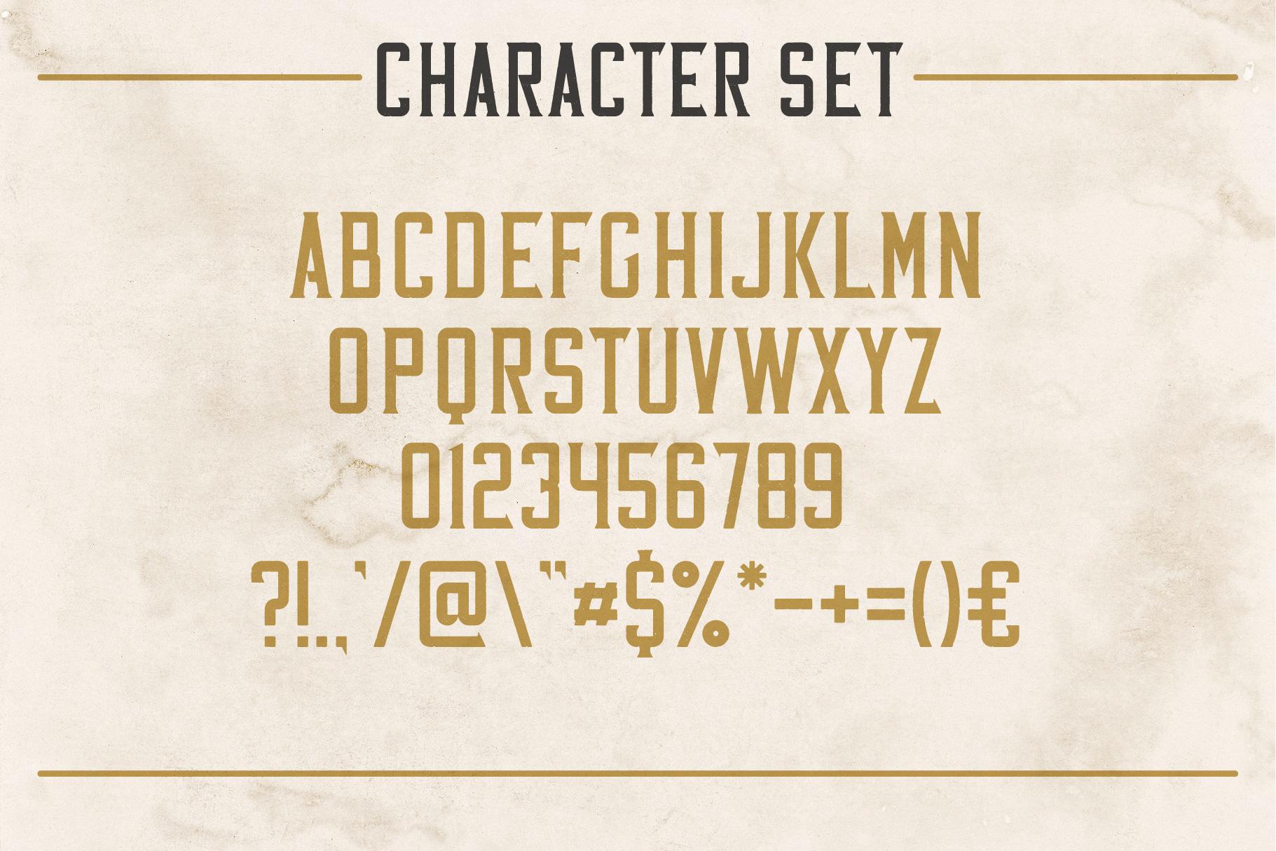 Whiskey Fonts Bundle example image 20