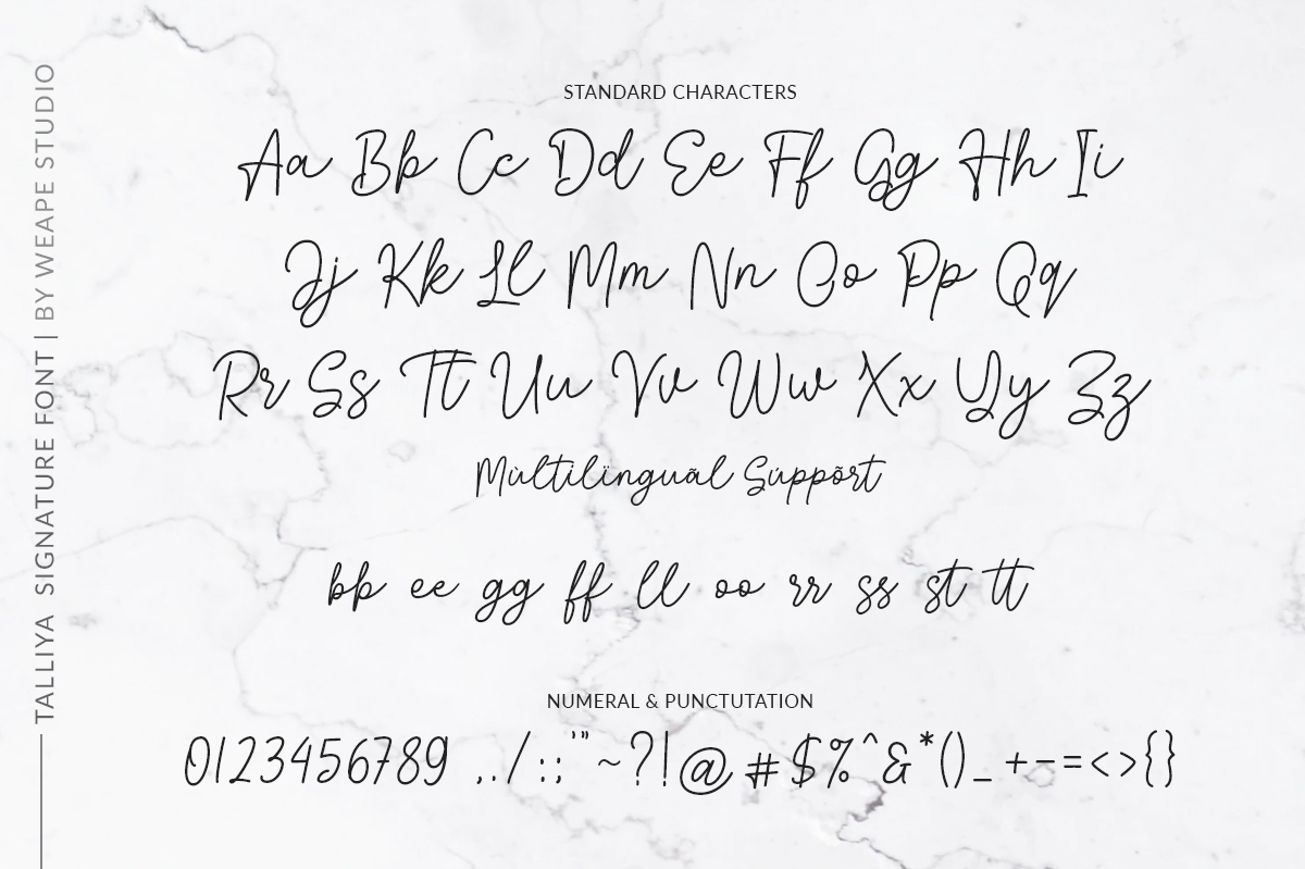 Talliya Signature Font example image 8