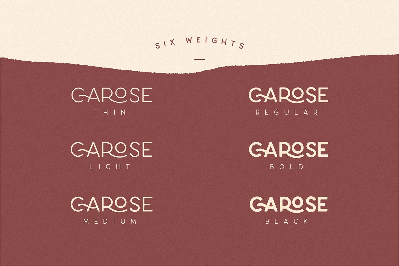 Carose Sans- 6 Elegant Typeface example image 15