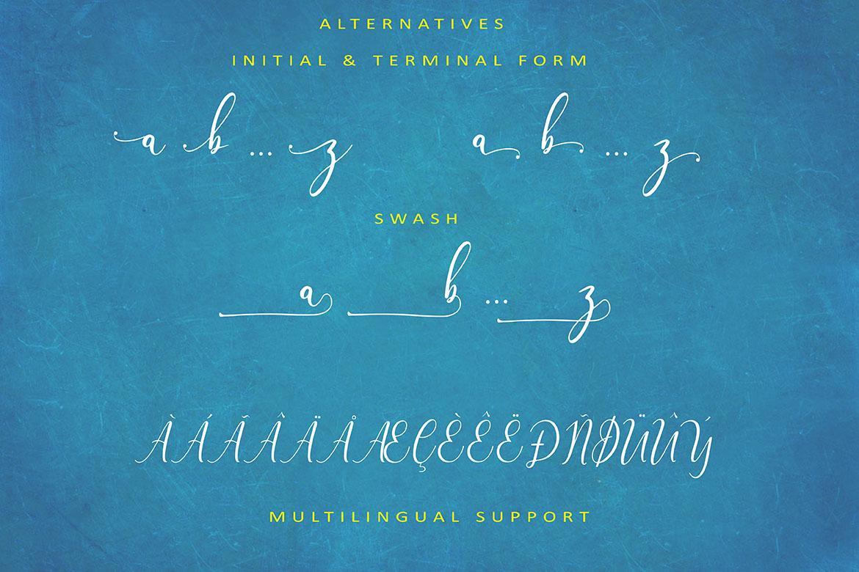 The Himalaya | beautiful handwriten example image 10