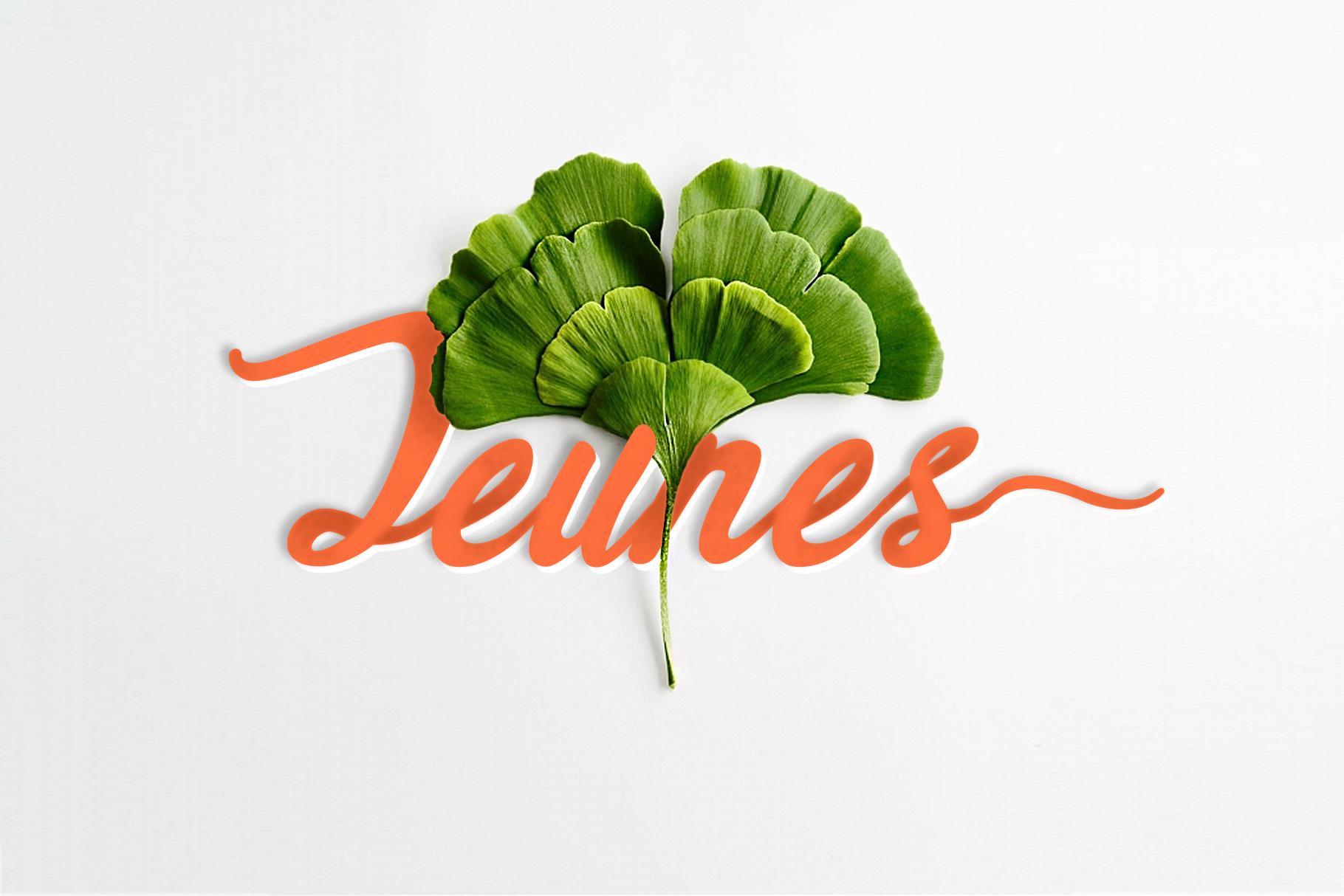 Jeunes example image 1