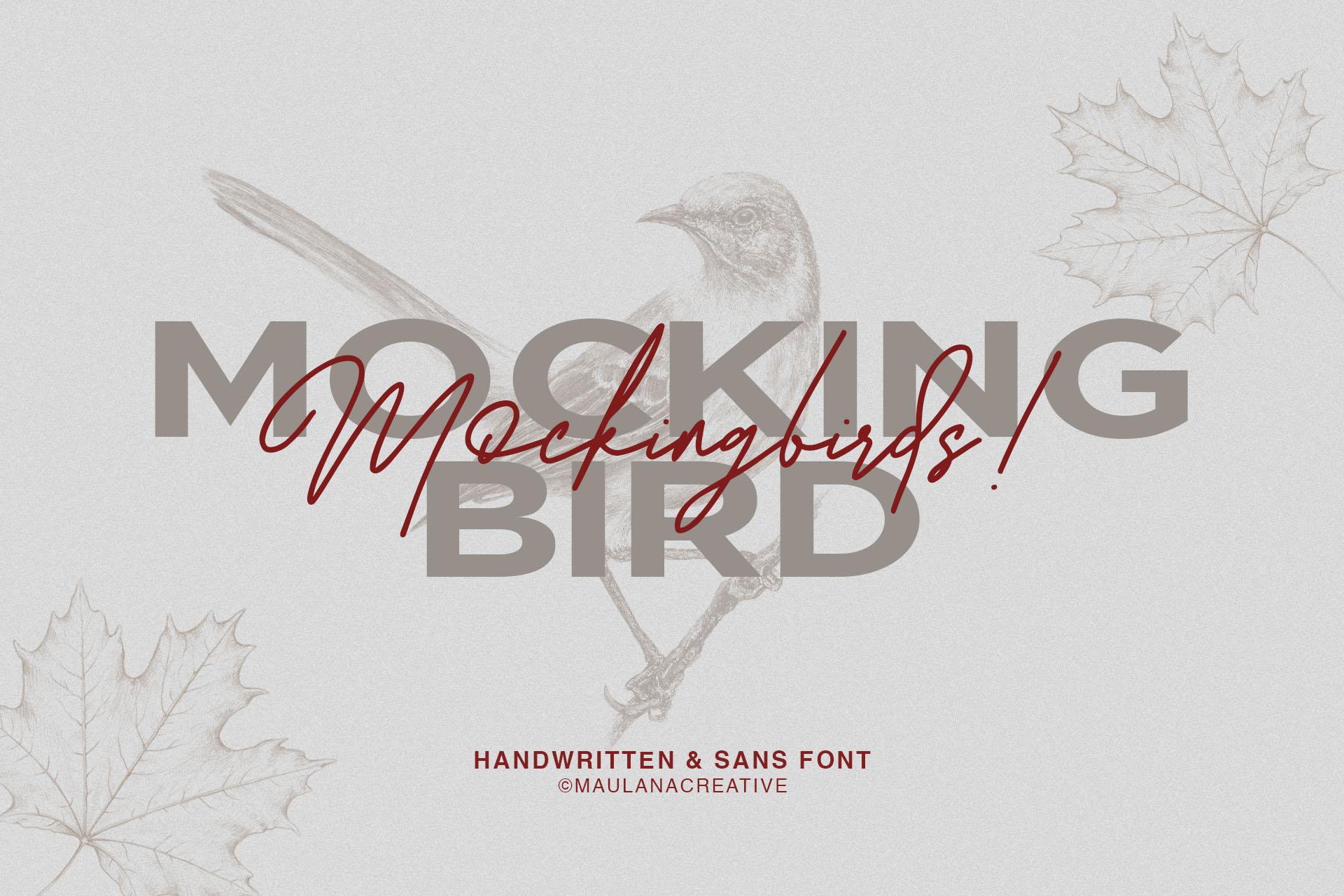 Redbird Signature Font Free Sans example image 2