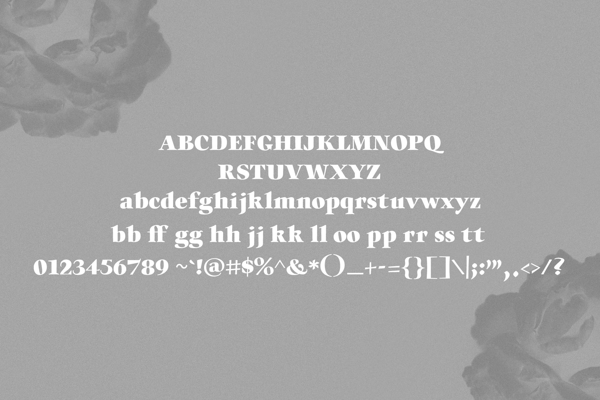Willys Script Serif Font example image 9