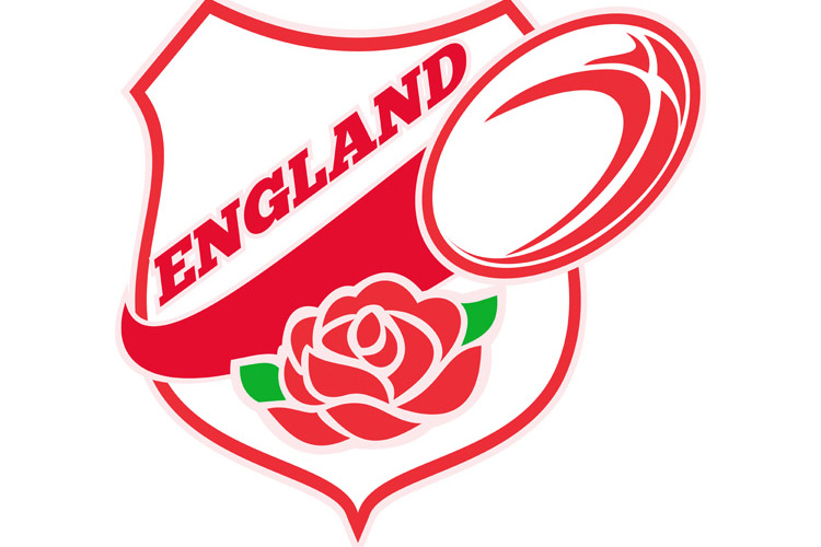 Rugby England English Rose Ball Shield example image 1