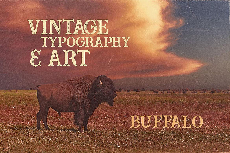 Buffalo Typeface example image 4