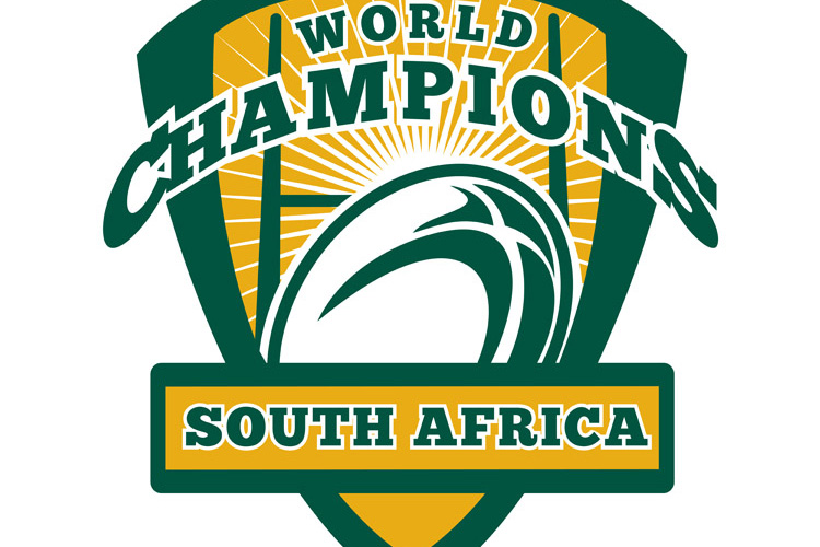 Rugby ball South Africa World Champions example image 1