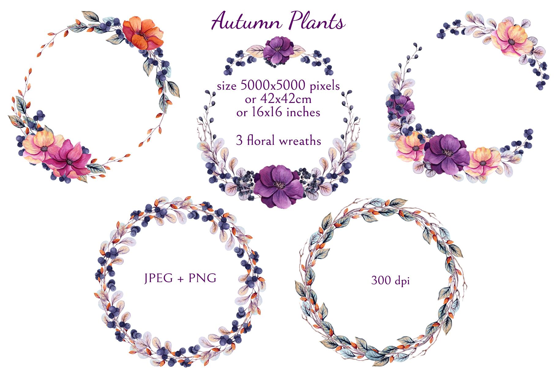 Autumn Plants example image 8
