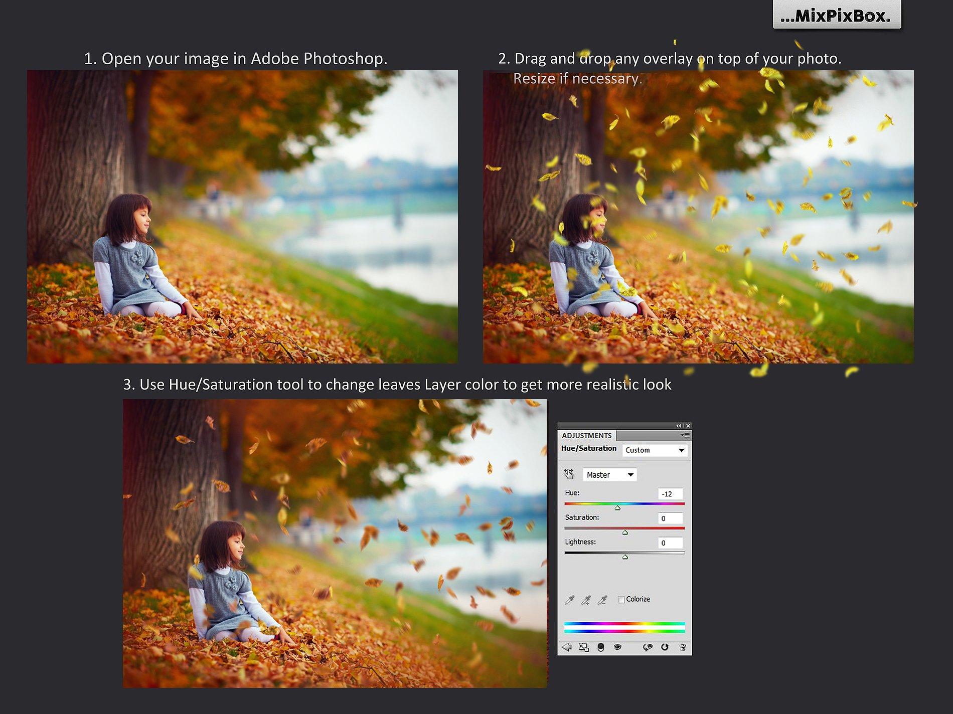 50 Autumn Leaves Overlays example image 4