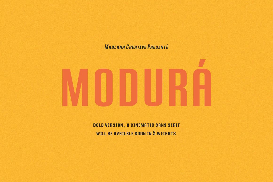 Modura Sans Font example image 1