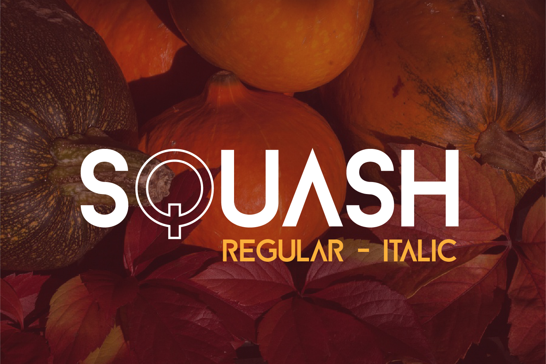 SQUASH example image 2