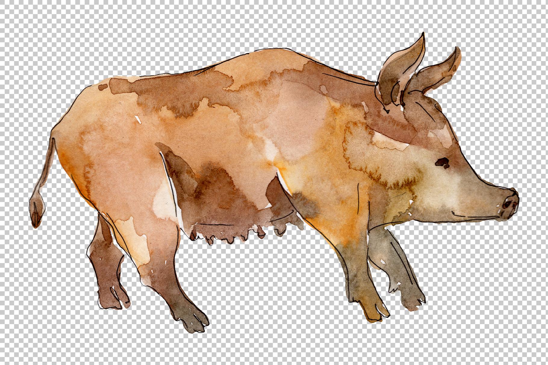 Farm animals pig boar Watercolor png example image 5