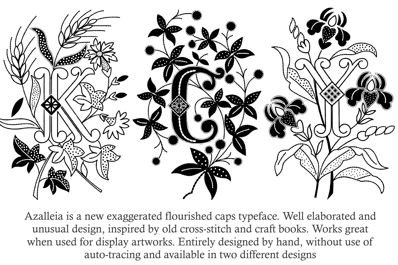 Azalleia Typeface Family Pack example image 4