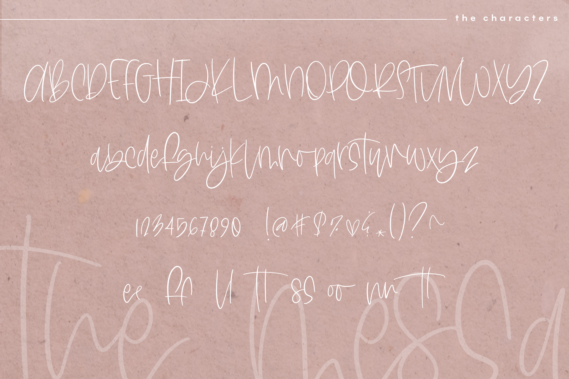 The Messa - A Handwritten Script Font example image 15
