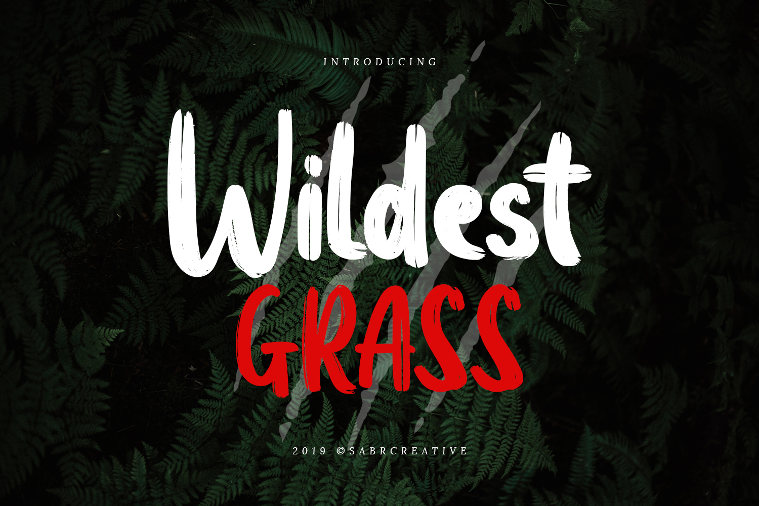 Wildest Grass example image 1