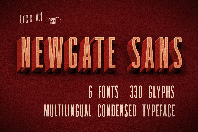 Newgate Sans example image 1