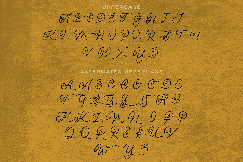 Magna - Monoline Script Font example image 11